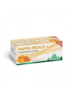 Pappa Reale Plus 12 Flaconi