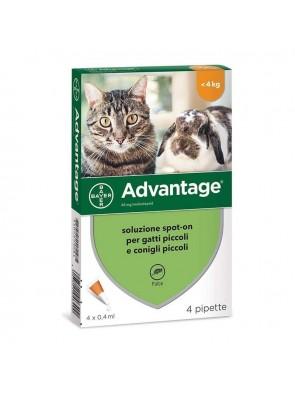 Advantage per Gatti e Conigli Piccoli 4 Pipette 0,4ml