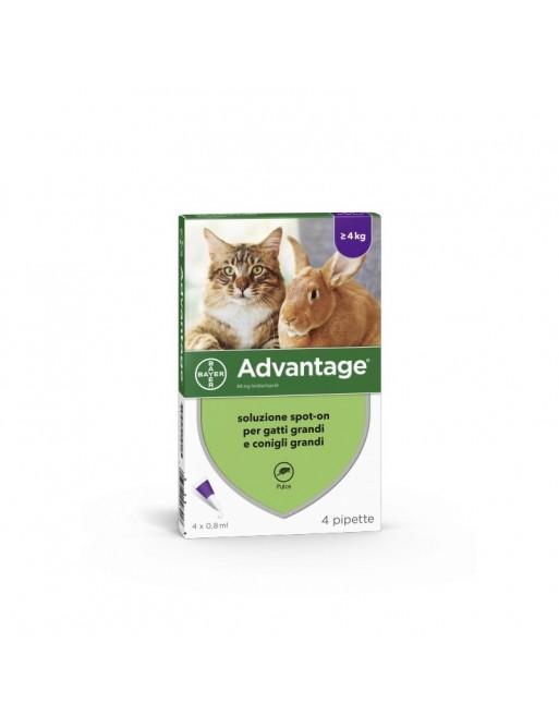 Advantage per Gatti e Conigli Grandi 4 Pipette 0,8ml